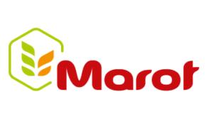 Marot